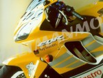 Plexi MRA pro HONDA CBR 600 F 01-10 Racing