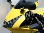 Plexi MRA pro HONDA CBR 900 RR 02- Racing