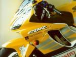 Plexi MRA pro HONDA CBR 600 S 01-10 Racing