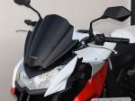 Plexi MRA pro KAWASAKI Z 1000 10- Racing