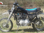 Harley Davidson XL 883 sportster
