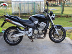 Prodám Honda CB 900F Hornet r.v.2004