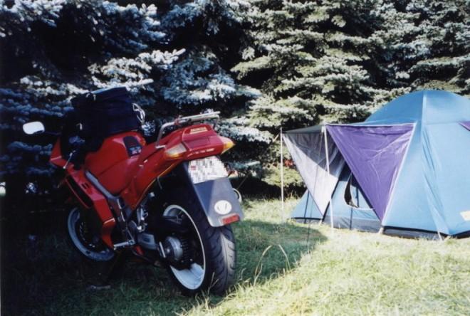 Høensko 2001