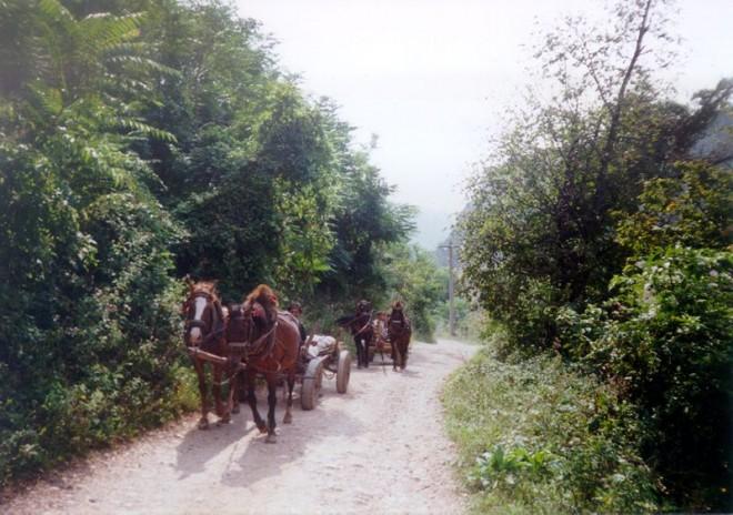 Cesta do Rumunska