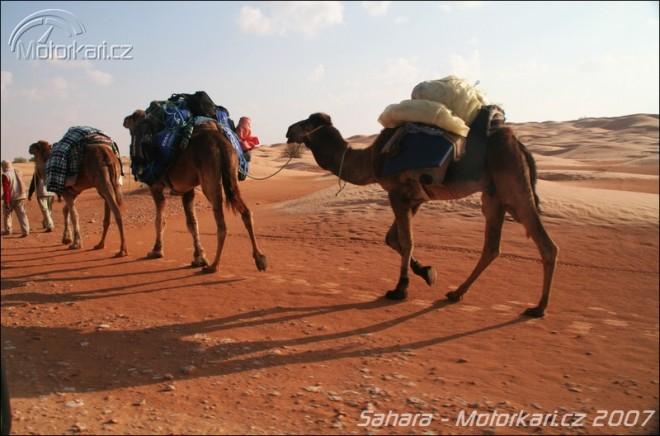 Co dokáže Sahara