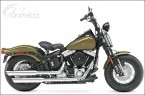 HD Softail Cross Bones