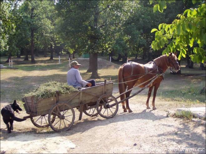 Moldavsko 2007