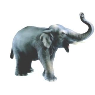 Elefantentreffen 2009 oèima Charyho
