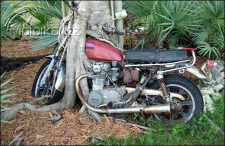 Krádeže motocyklù 2008 - statistiky a rady