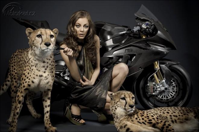 BMW a 3 divoký koèky