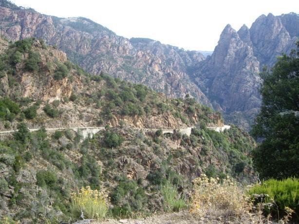 Korsika nadivoko