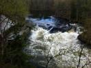 Pe�eje u ml�na Myllykoski v parku Oulanka