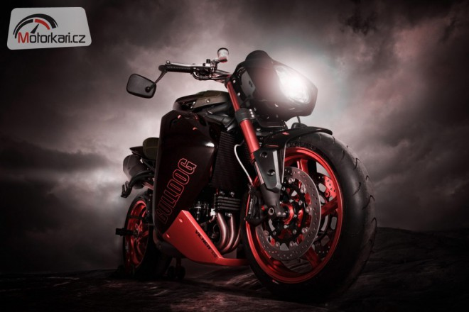 Vilner Speed Triple Bulldog