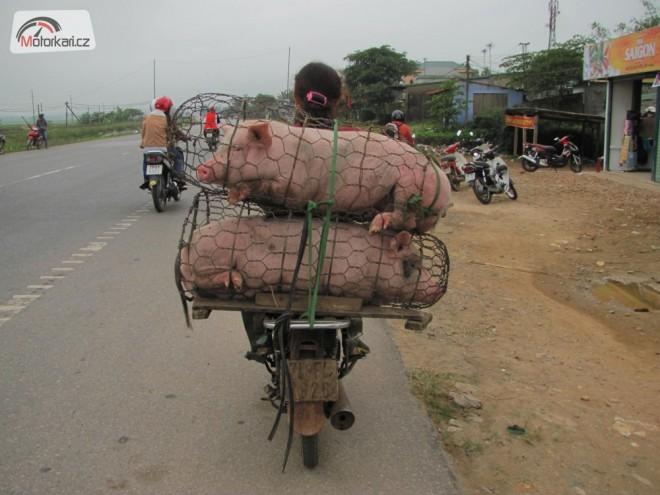 Vietnam na skútrech + nìco navíc
