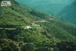 Korsika – Asi t