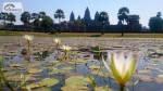 Divoká Kambodža