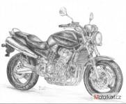 Moto skupina Honda Hornet