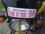 bidlos