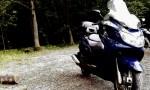 rider_Danny