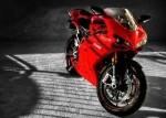 DucatixDave