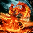 Phoenix69