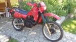 marcek291