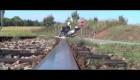 Burgman 400 Ride film-Loner