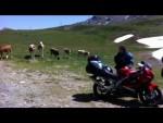 Tour des Grandes Alpes 2015 - foto